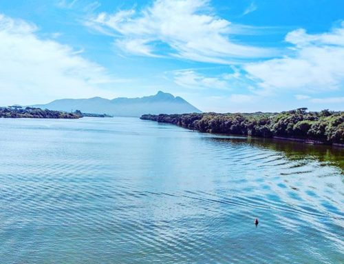 Deep blue 😎•••#lake #sabaudia #italy #spring #circeo #rowing #kayak #igerslatina #travel #travelling #traveler #instatravel #trip #photooftheday #lifeofadventure #instapassport #instatraveling #mytravelgram #travelgram #travelingram #igtravel #instalife #ig_worldphoto #traveling #travelblog #instago #travelstoke