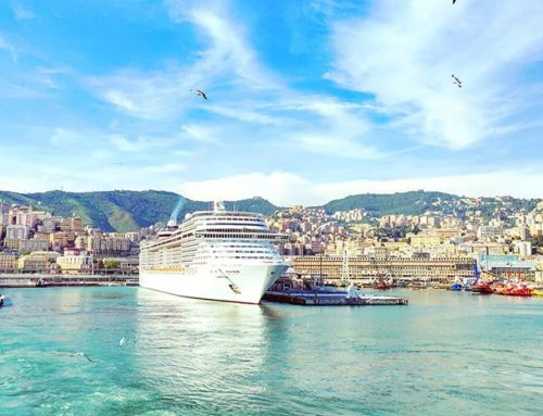 Bye bye Genoa •••#genova #seagull #sailor #cruising #cruise #crew #sailing #travel #traveling #traveler #instatravel #instapassport #instatraveling #travelgram #travelingram #igtravel #travelblog #sea #travelstoke
