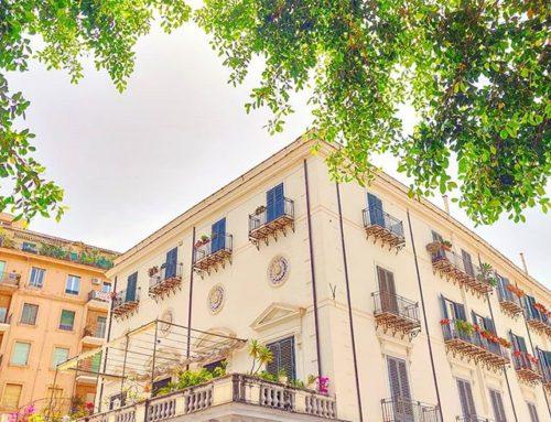The Green Frame ••#TBT #Palermo #tree #travel #travelling #traveler #instatravel #wanderlust #trip #lifeofadventure #doyoutravel #instapassport #instatraveling #mytravelgram #travelgram #travelingram #travelstoke #traveling #travelblog #instago #igersitalia