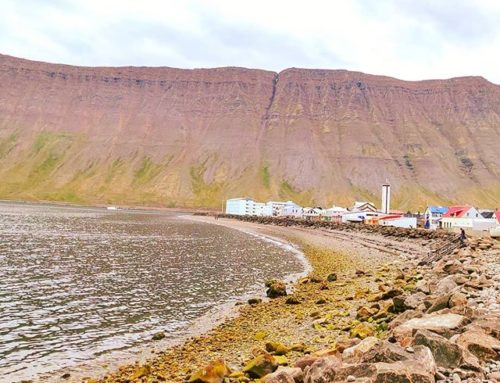 Do you meant let's go on the beach? •••#ísafjörõur #iceland #fjord #polarcircle cruising #cruise #crew #sailing #sailor #lifeatsea #travel #travelling #traveler #instatravel #trip #lifeofadventure #instapassport #instatraveling #mytravelgram #travelgram #travelingram #igtravel #instalife #ig_worldphoto #traveling #travelblog #instago #travelstoke