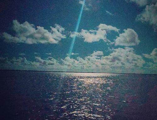 Moonshine in Bimini, Bahamas 🇧🇸  #traveling #bimini #travelling #fullmoon #islandlife #islands #moon #bahamas #travelgram #travelphotography #island #instamoon #travel #moon #instatravel #travelblog #traveltheworld #bahamas🇧🇸 #traveler #travelblogger #travelholic