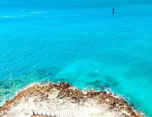 The Infinity blue of Ocean Cay   #bahamas #msccruises #cruises #kingsisland #traveler #travelling #travelgram #traveller #travelislife #travels #oceancay #travel #island #travelblogger #travelphotography #travel_captures #travelawesome #ísland #oceancaymscmarinereserve #cruising #instatravel #travelog #traveling #traveladdict #travellers