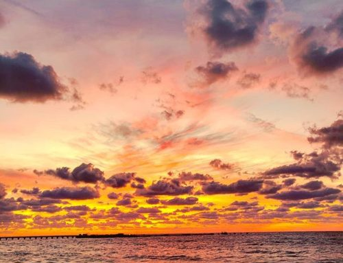 Just another stunning sunset #bimini #travelholic #travelawesome #travelgram #caribbean #sea #travelpic #seaside #travelingram #sunset #travellife #travelstoke #caribbeansea #sealife #travelmore #sunset_madness #travelers #travelblogger #clouds #traveler #traveling #sunset #traveladdict #travelphoto #travel