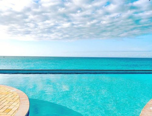 Go beyond your limits 🤙 🇧🇸 #bimini #bahamas #sealife #travelholic #travellife #traveling #infinity #travelmore #travelpics #travelphotography #island  #sea #traveladdict #islandlife #travelgram #seashore #traveler #travelling #travels #seascape #travelstoke #infinitypool #travelawesome #travel