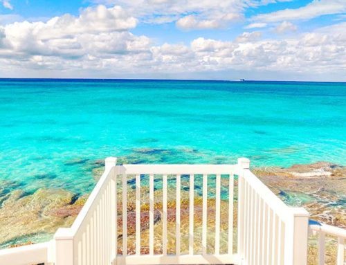 Just another stunning lookout… 🏝️🤙 #bimini #bahamas #travelblog #seaside #traveldiaries #traveler #travels #traveller #traveling #travelling #sea #travelphotography #seascape #seashore #travelgram #travelstoke #traveladdict #travel #island #travelphoto #sealife #islandlife #travelblogger #sea