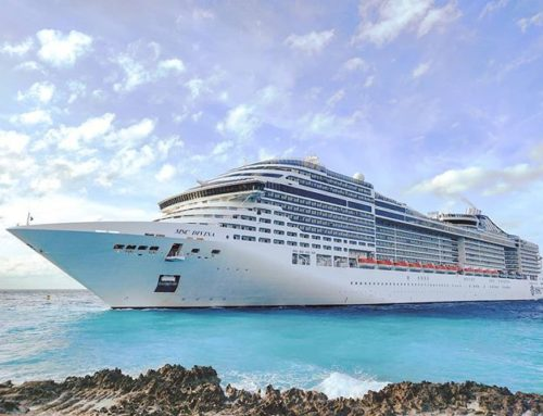 Here we are! 🤙🍾🏝️ #oceancay #msccruises #mscmarinereserve #bahamas #travelingram #traveller #travelphoto #travelstoke #travelgram #travelphotography #travelholic #travellife #traveladdict #travels #travelpics #traveling #islandlife #cruiseship #ship #travel #cruises #traveler #island #travelawesome #msccruises #travelling #cruise
