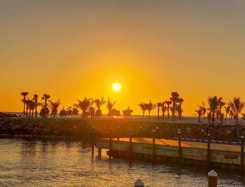 Wake up time#oceancay #msccruises #mscmarinereserve #bahamas #travelstoke #sunrise #traveling #travelpics #island #sunrise #travelers #travelblog #islandvibes #travelmore #travelholic #travelphoto #traveladdict #travelling #travellers #travelphotography #travelgram #travel #travelblogger #sunrises #travels #prilaga #travelawesome #islands