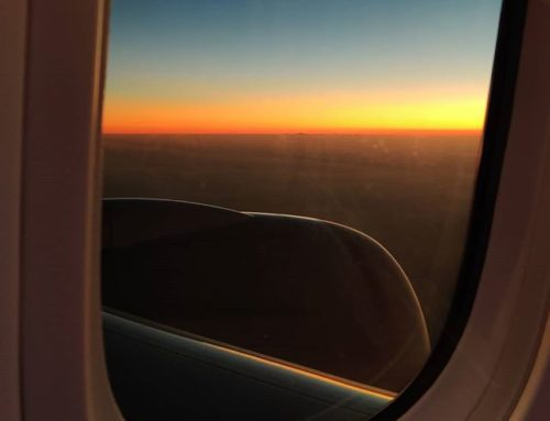 Sunrise over the Middle East Sky 🤙️😎 #nofilter #travelphotography #sunrise #travelling #skyscape #travelpic #travelbug #fly #travellife #travels #travel #traveling #travelawesome #travelgram #traveller #travelingram #travelstoke #traveladdict #travelers #traveldeeper #prilaga #travelblogger #travelphoto #sky #flying #travelholic #traveler #traveltheworld