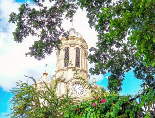 Time of nature 🤙 Saint John's, Antigua & Barbuda 2015#antigua #saintjohn #traveler #travelingram #travels #travelawesome #travelphotography #travelphoto #traveldeeper #traveller #travelpics #caribbean #clouds #traveladdict #travelling #travelholic #travellife #travel #church #sky #tree #travelstoke #travelgram #traveling #travelblog