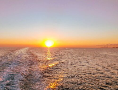 The best vibes while sailing on cruise MSC Divina, Marseille 2019#msccruises #msccrociere #lifeatsea #tbt #crew #crewlife #travels #sunset #traveler #seaview #travelstoke #travellife #travelholic #cruiselife #travelblog #sailing #sea #travelphotography #traveladdict #sailinglife #cruiseship #traveling #travelgram #travel #cruise #traveller #travelphoto
