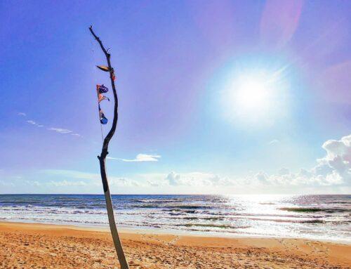 Seaside lifestyle 😎🤙#sabaudia #italy #flag #sand #sunglare #reflection #travelblogger #beach #travelphotography #sun #traveladdict #seaside #worldtraveler #sea #autumn #travel #beachvibes #travelawesome #nature #sky #traveltheworld #travelstoke #beachlife