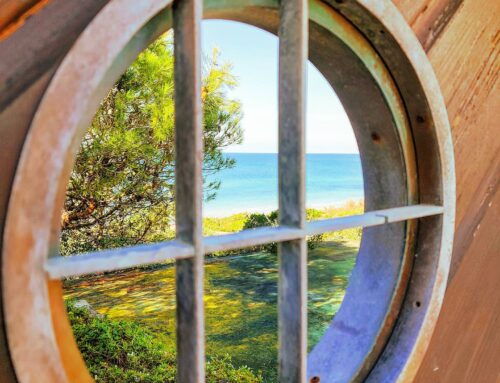 Stuck here #sabaudia #italy #Italia #porthole #nature #travelling #beach #traveladdict #traveltheworld #instatravel #sea #igtravel #travelgram #travel #traveling #instatraveling #traveller #seascape #travels #traveler #sealife #travelphoto #travelingram #travelphotography  #travelblog #green #blue
