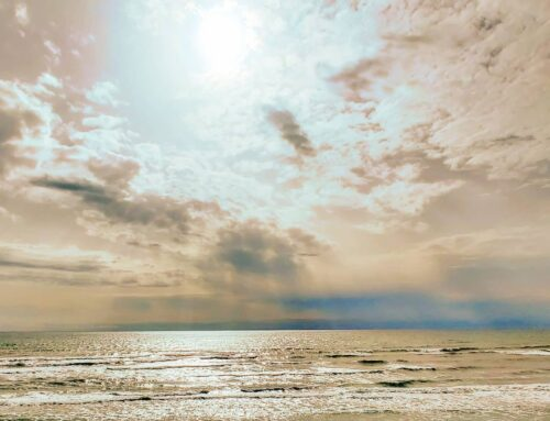 Sea breeze 😎 🤙#sabaudia #italy #Italia #mare #sky #sunset #naturelover #traveltheworld #clouds #travel #sea #nature #beachlife #travelgram #traveling #naturephotography #naturelovers #travelphotography #sun #sunshine #prilaga #travelling #travelblogger #traveler #beach #travelingram