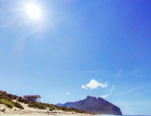 Beach walking 🤙#sabaudia #italy #Italia #circeo #mare #sand #traveler #beachwaves #travel #sealife #travelingram #travelgram #spiaggia #beaches #beach #sea #beachlife #traveltheworld #travelblogger #seascape #travelphotography #traveling #traveller