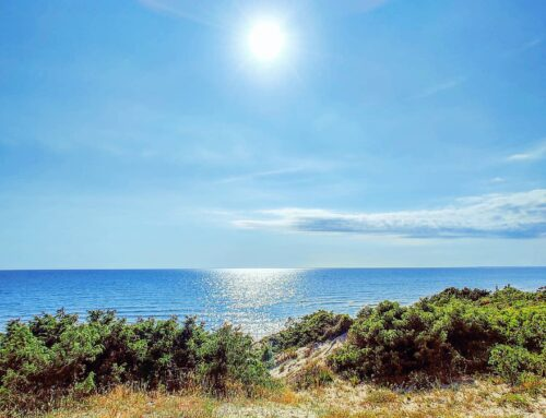 Infiniy blue😎 🤙#sabaudia #italy #Italia #mare #spiaggia #travelling #travel #beachvibes #sun #sunglare #natura #sealife #travelgram #traveller #naturelovers #traveling #sea #beachlife #traveler #travelblogger #beaches #beachwear #nature #seaside #travelphotography #seascape #beach #naturephotography